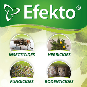 Efekto products
